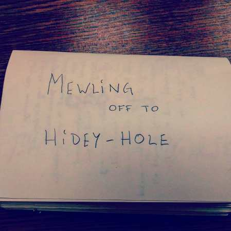 mewling off to hidey hole, mortality can be so boring, julius ferraro, poetry